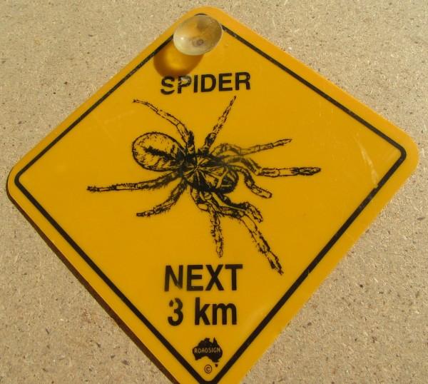 Road Sign - Spider