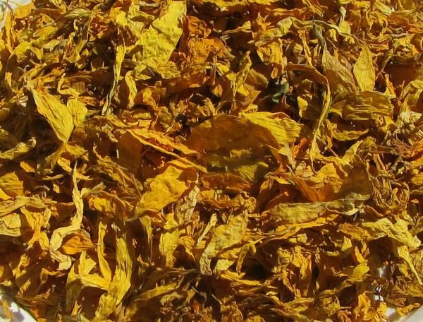 Sonnenblumen-Blütenblätter