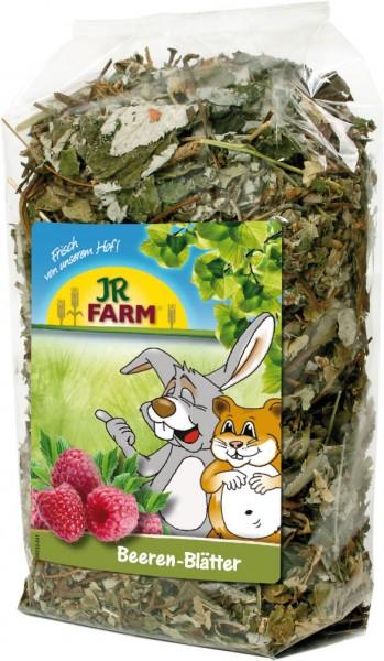 JR Farm Beeren-Blätter - 100 g