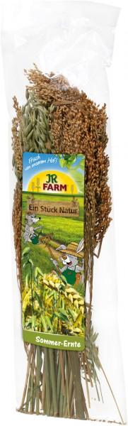 JR Farm Sommerernte - 80 g