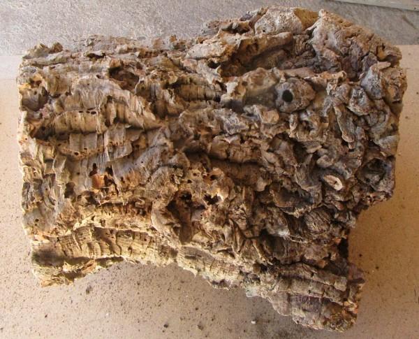 Korkröhre Größe II