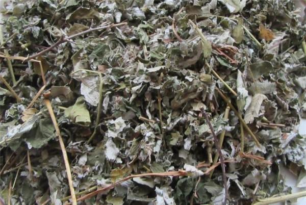 Beerenblätter Mix