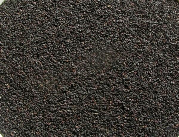 Sesamsaat schwarz