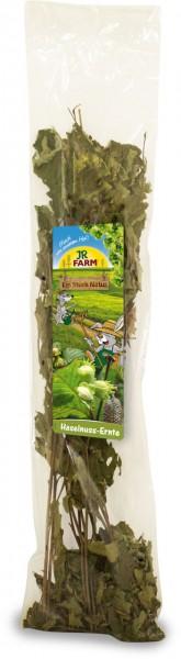 JR Farm Haselnuss Ernte - 40 g